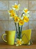 Blumenstrauß der Narzissen Lizenzfreie Stockbilder
