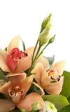 Blumenstrauß der Orchideen und des Eustoma getrennt lizenzfreie stockbilder