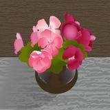 Blumenstrauß der Pelargonie Stockbild