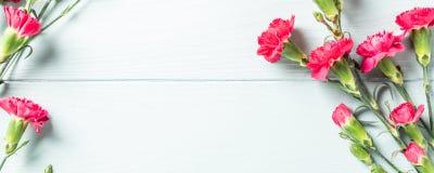 Blumenstrauß der rosa Gartennelke auf hölzernem Hintergrund des hellen Türkises lizenzfreies stockbild