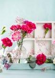 Blumenstrauß der rosa Gartennelke auf hölzernem Hintergrund des hellen Türkises stockfotografie