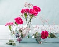 Blumenstrauß der rosa Gartennelke auf hölzernem Hintergrund des hellen Türkises lizenzfreies stockfoto