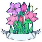 Blumenstrauß der rosa Lilie verzierte Band, Freihandzeichnenzeichnung Lizenzfreie Stockfotos