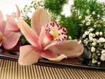 Blumenstrauß der rosafarbenen Orchideen und der weißen Blumen auf Platte Lizenzfreies Stockbild