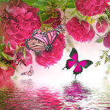 Blumenstrauß der rosafarbenen Pfingstrosen Lizenzfreie Stockfotos