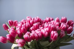 Blumenstrauß der rosafarbenen Tulpen lizenzfreie stockfotos