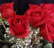 Blumenstrauß der Rosen Lizenzfreies Stockfoto