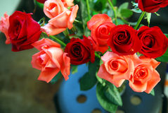 Blumenstrauß der Rosen Lizenzfreie Stockfotos