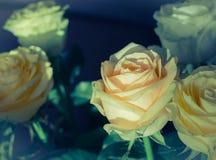 Blumenstrauß der Rosen schließen oben Lizenzfreie Stockfotos