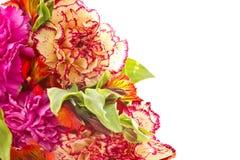 Blumenstrauß der roten Gartennelken und der Chrysanthemen Lizenzfreies Stockfoto