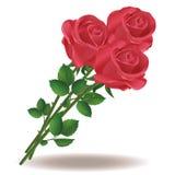 Blumenstrauß der roten Rosen Lizenzfreies Stockbild