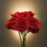 Blumenstrauß der roten Rosen. Stockfoto