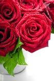 Blumenstrauß der roten Rosen Stockfotografie