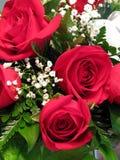 Blumenstrauß der roten Rosen Stockbilder