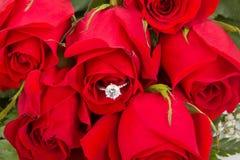 Blumenstrauß der roten Rosen mit Verlobungsring Stockbilder