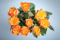 Blumenstrauß der roten und gelben Rosen über Blau Stockfotografie