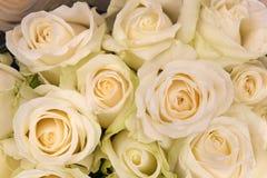 Blumenstrauß der Sahne-weißen Rosen Stockfotografie
