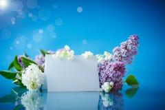 Blumenstrauß der schönen purpurroten Flieder Lizenzfreies Stockbild