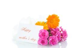 Blumenstrauß der Sommerblumen Lizenzfreies Stockfoto