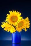 Blumenstrauß der Sonnenblumen in einem blauen Vase Lizenzfreie Stockfotos