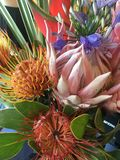 Blumenstrauß der tropischen Blumen Stockfotografie