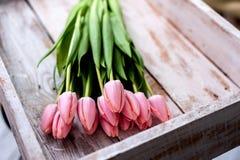 Blumenstrauß der Tulpe Stockfotografie