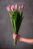 Blumenstrauß der Tulpe Lizenzfreies Stockfoto