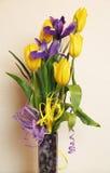 Blumenstrauß der Tulpen und der Blenden Lizenzfreies Stockfoto