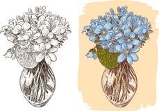 Blumenstrauß der Veilchen Lizenzfreie Stockfotografie