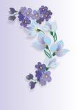 Blumenstrauß der Veilchen Lizenzfreie Stockbilder
