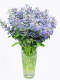 Blumenstrauß der violetten Blumen des Feldes im Vase Lizenzfreies Stockbild