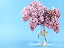 Blumenstrauß der violetten Flieder Stockbilder