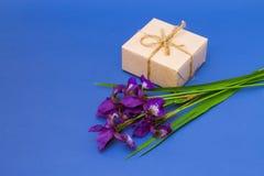 Blumenstrauß der violetten Iris blüht auf einem blauen Hintergrund Stockfotografie