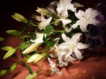 Blumenstrauß der weißen Lilien Lizenzfreies Stockbild
