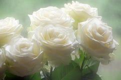 Blumenstrauß der weißen Rosen lizenzfreie stockfotos