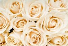 Blumenstrauß der weißen Rosen Lizenzfreie Stockbilder