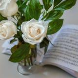 Blumenstrauß der weißen Rosen des Frühlinges stockfotos