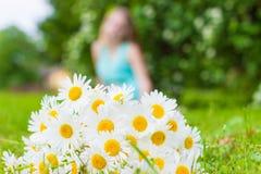 Blumenstrauß der Wiese der weißen Gänseblümchen liegt auf grünem Gras Lizenzfreies Stockbild