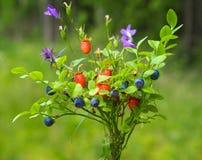 Blumenstrauß der wild wachsenden Pflanzen, Blaubeere und Walderdbeere lizenzfreies stockfoto