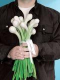 Blumenstrauß der Zwiebeln Lizenzfreie Stockbilder