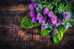 Blumenstrauß des blühenden Klees auf dem hölzernen Hintergrund Lizenzfreie Stockbilder