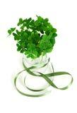 Blumenstrauß des falschen Shamrocks mit grünem Farbband Lizenzfreies Stockbild
