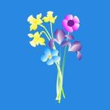 Blumenstrauß des Frühlinges blüht auf einem blauen Hintergrund Lizenzfreie Stockbilder