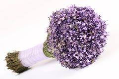 Blumenstrauß des frischen Lavendels senken auf weißen Hintergrund Stockbilder