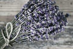 Blumenstrauß des getrockneten Lavendels Lizenzfreie Stockfotografie
