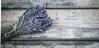 Blumenstrauß des getrockneten Lavendels Stockfotografie