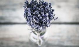 Blumenstrauß des getrockneten Lavendels Stockbilder