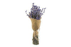 Blumenstrauß des getrockneten Lavendels auf einem weißen Hintergrund lizenzfreie stockbilder