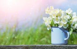 Blumenstrauß des Jasmins Lizenzfreies Stockbild