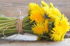 Blumenstrauß des Löwenzahns Stockfotos